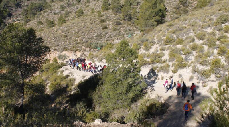 XIII Ruta del Roche SUSPENDIDA